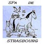 Refuge de la SPA de Strasbourg