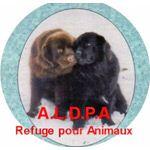 Adresse Email De La Caf De Mayotte