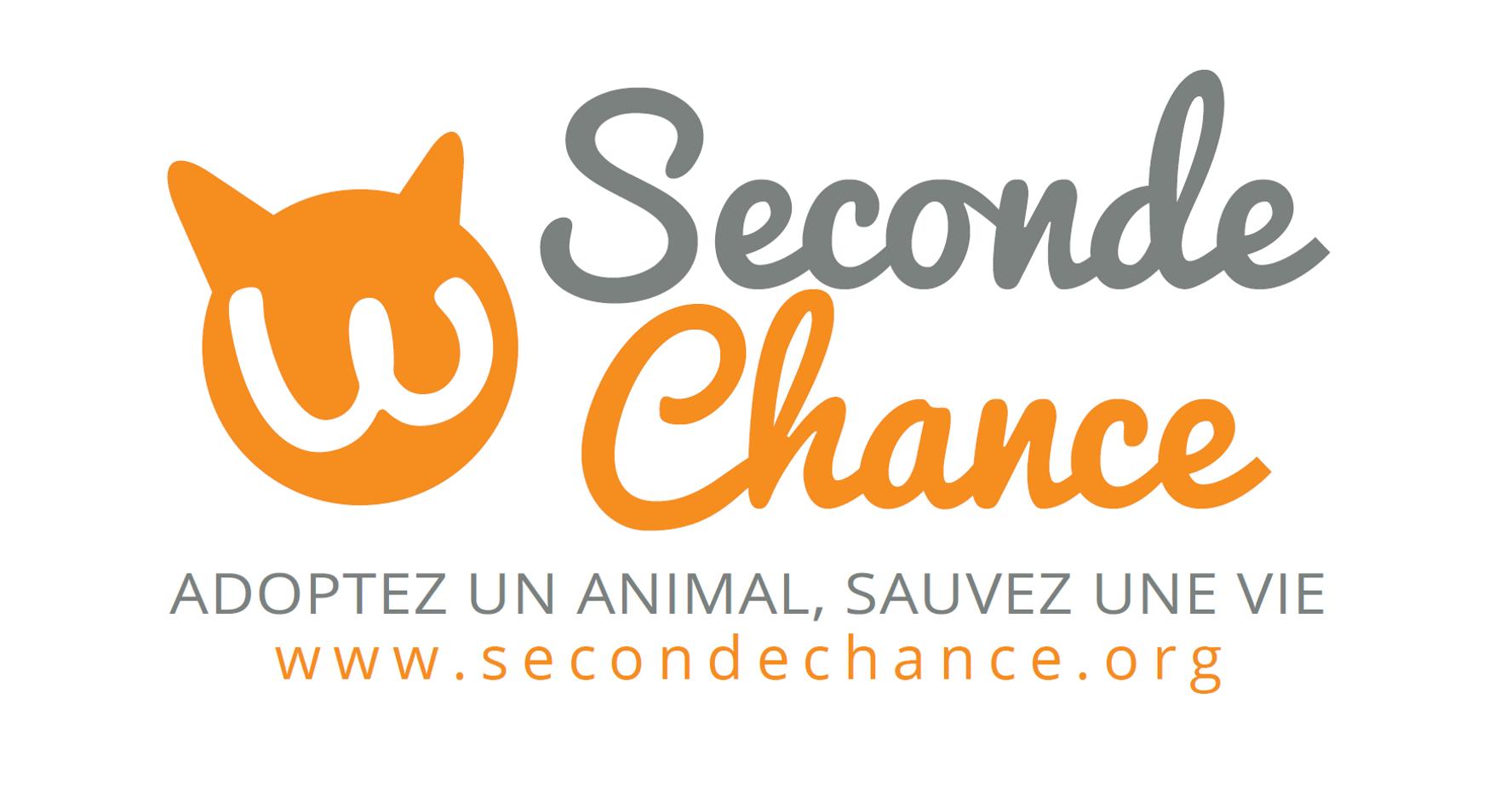 Adoption Chien Adoption Chat Et Adoption Tous Animaux De Compagnie Avec Seconde Chance