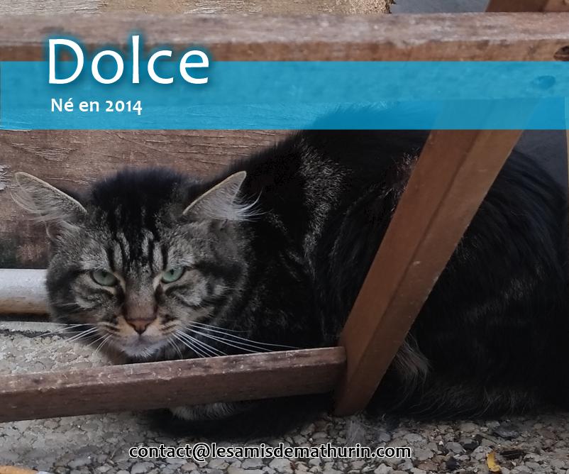 DOLCE de Montereau