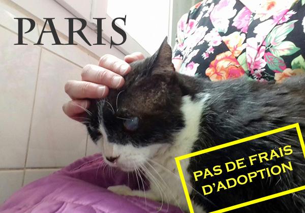 PARIS, 9 ans, non voyant