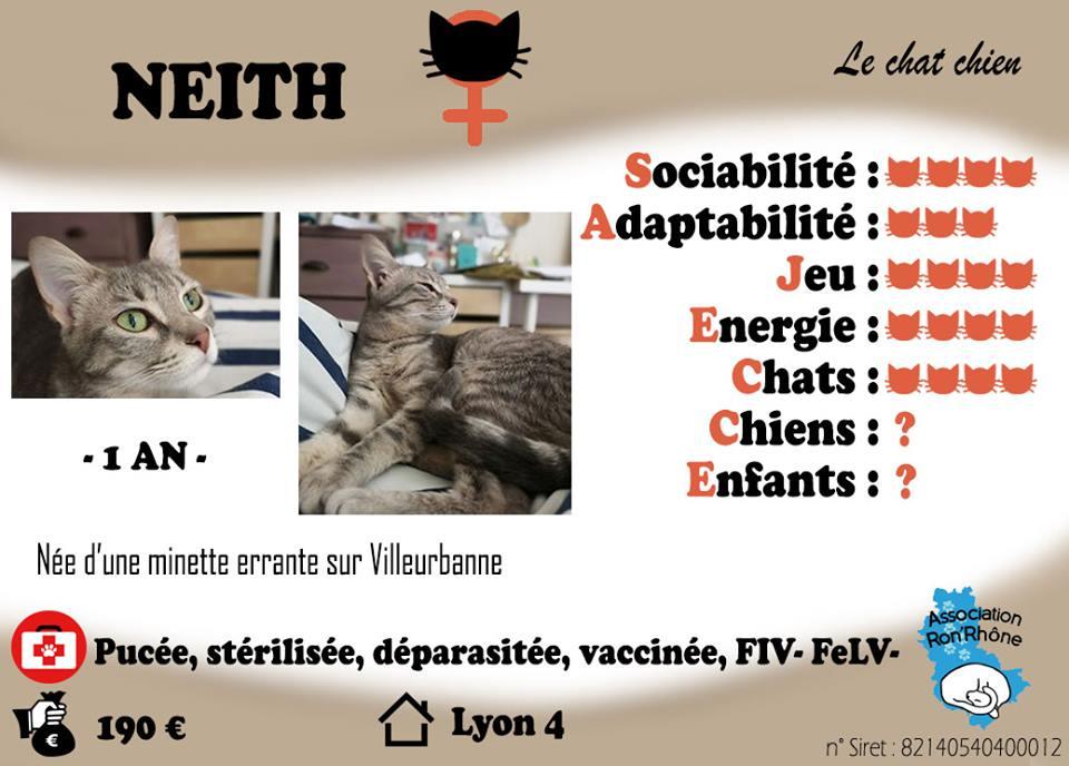 NEITH