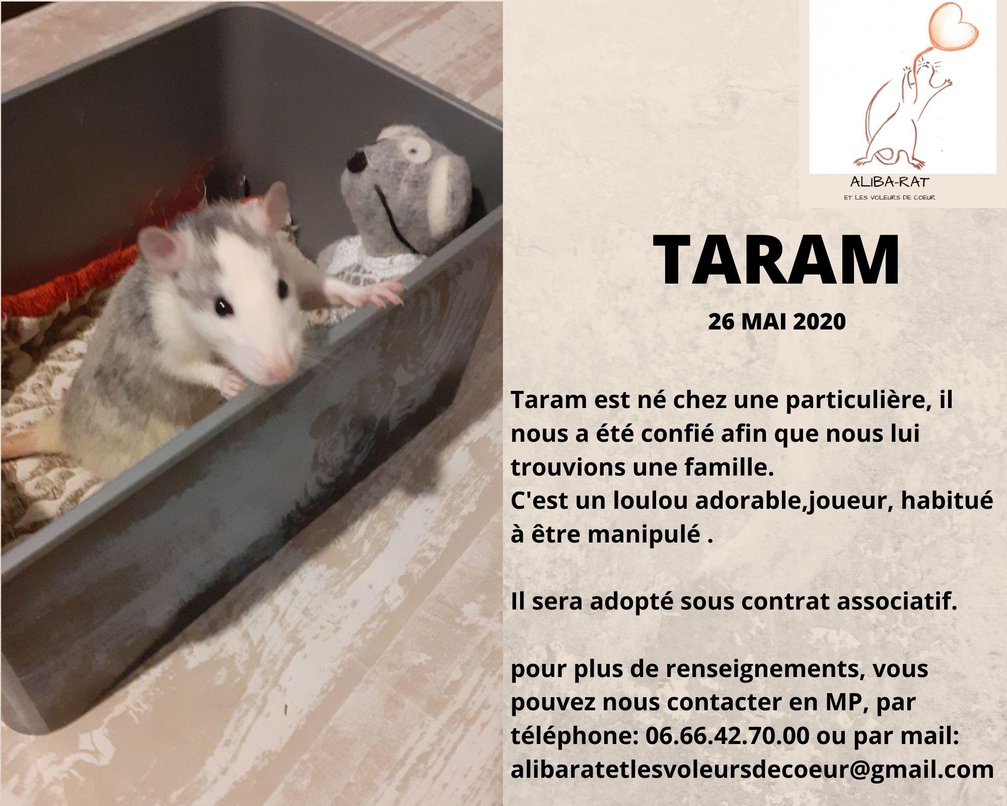 Taram