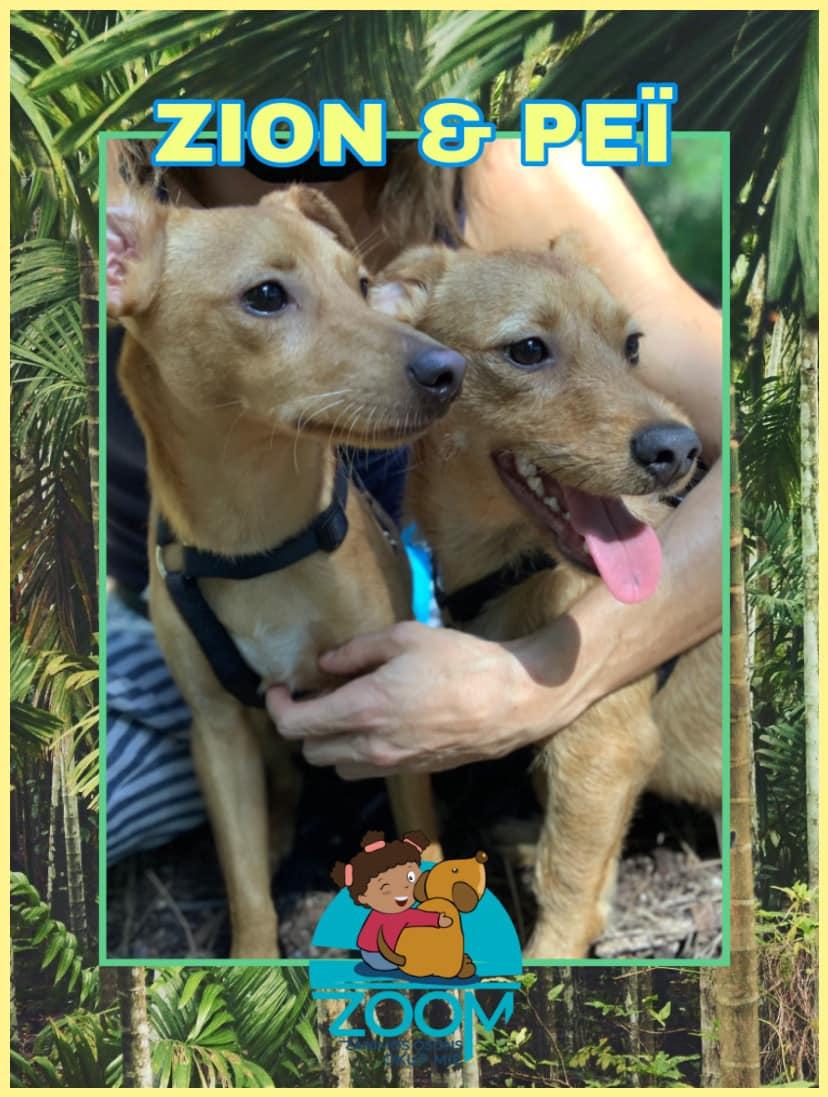 Zion et Pei