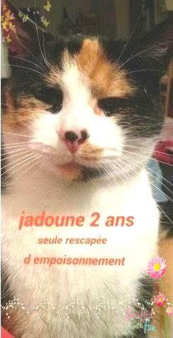 JADOUNE