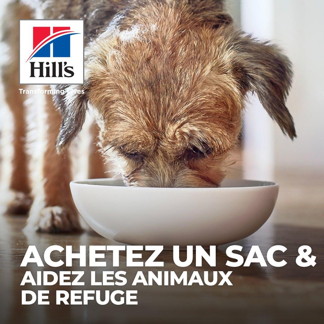 Aidez les animaux de refuge