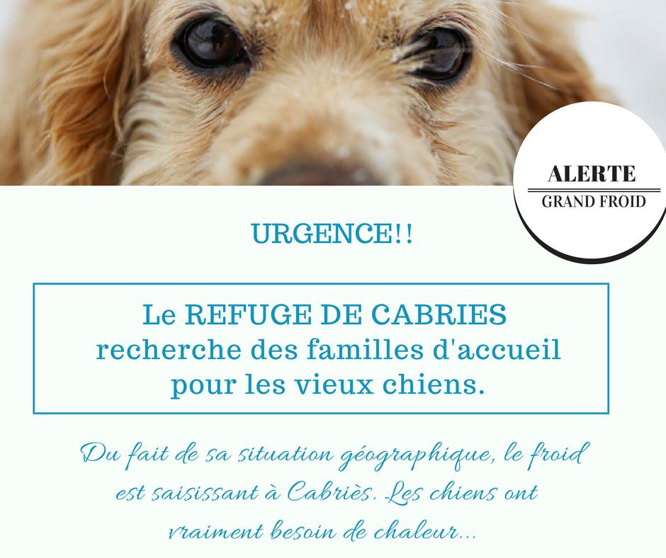 NOUS CHERCHONS DES FAMILLES D'ACCUEIL
