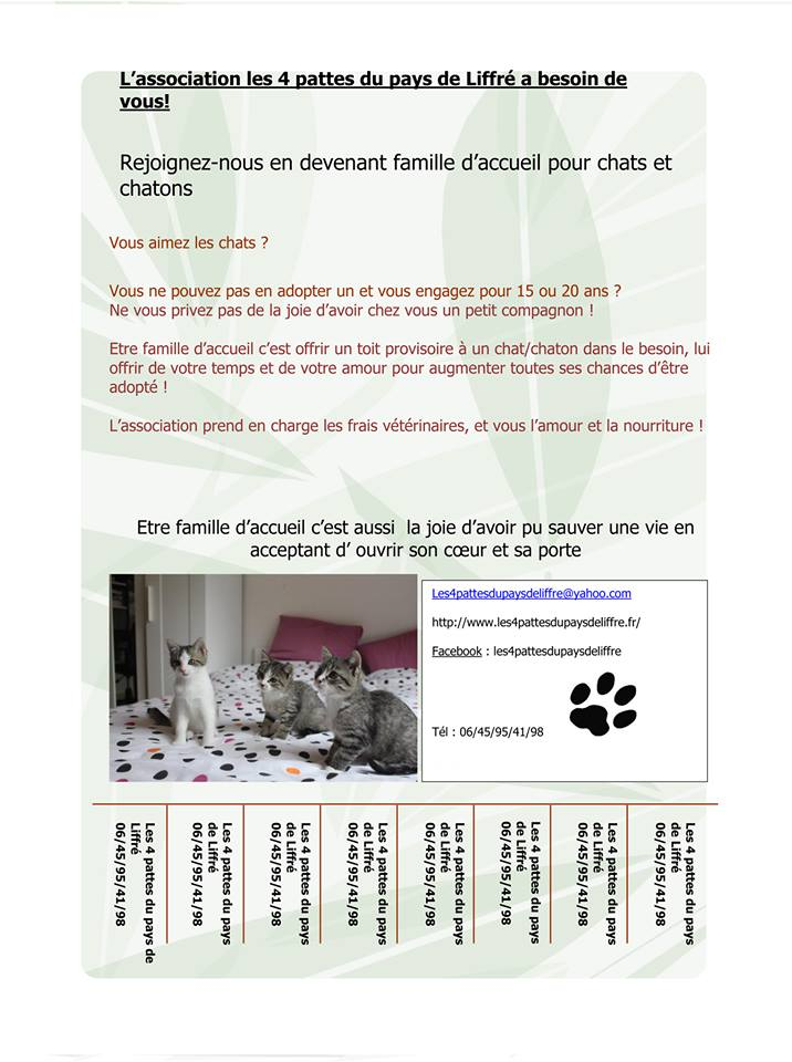 Recherche Famille D'accueil dans le 35