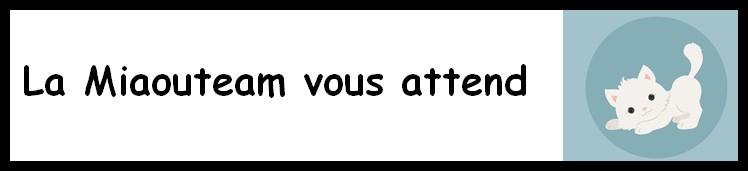 Rejoignez la Miaouteam pour un euro solidaire par mois