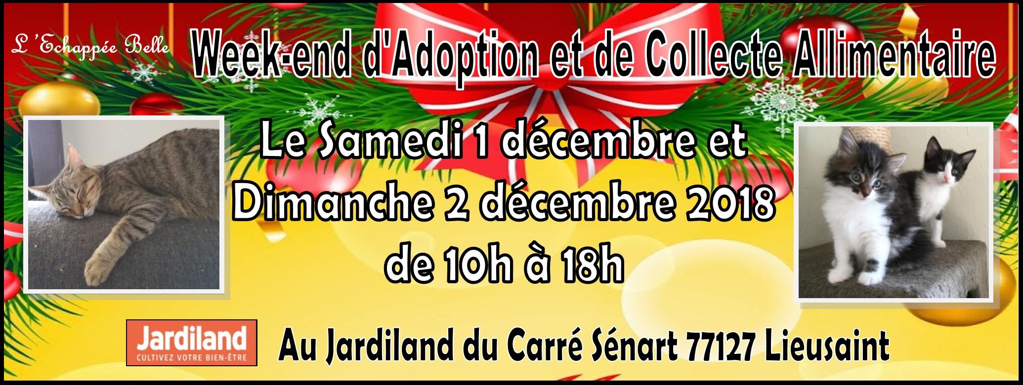 Week- end d'adoption et de collecte les 1 et 2 decembre 2018 Jardiland CARRE SENART 77