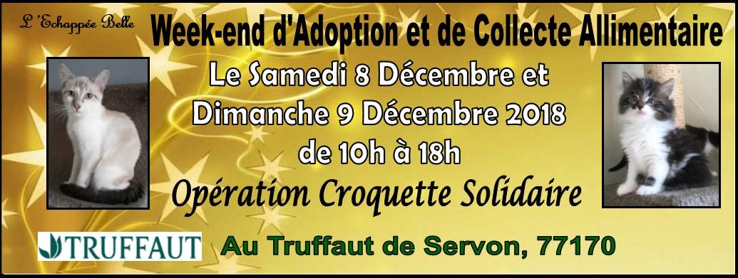 WEEK- END d'adoption et de collecte les 8 et 9 decembre 2018 TRUFFAUT SERVON 77