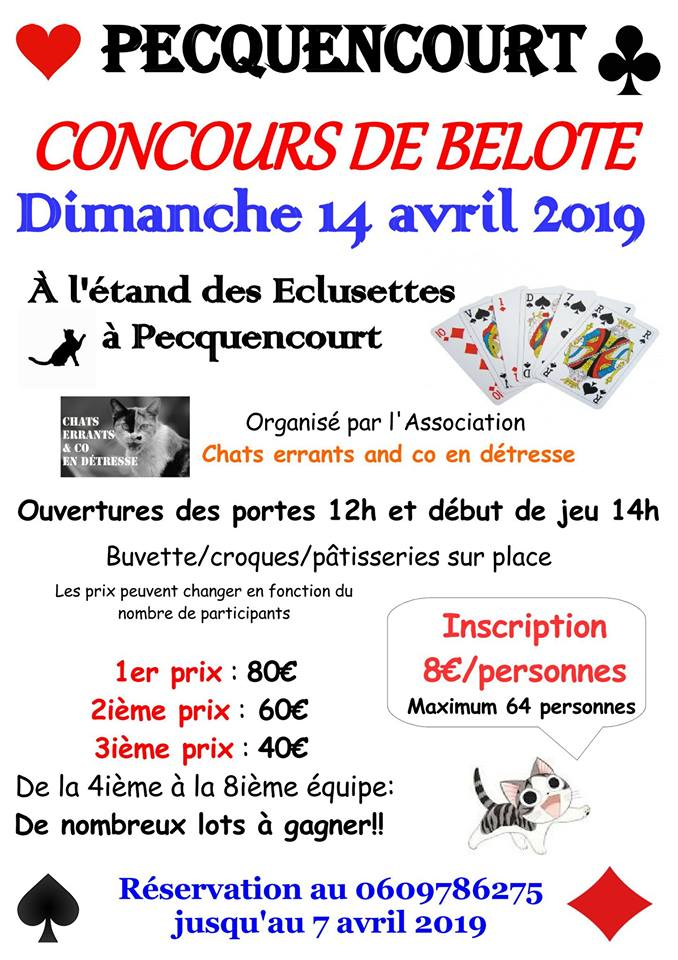 Concours de belote à Pecquencourt 59146