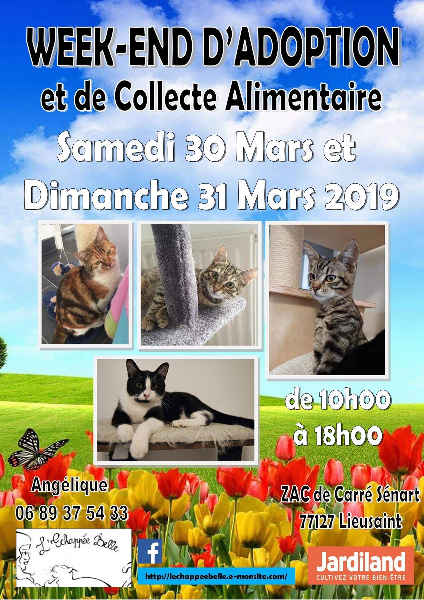 WEEK- END d'adoption et de collecte les 30 et 31 mars  2019 JARDILAND CARRE SENART 77