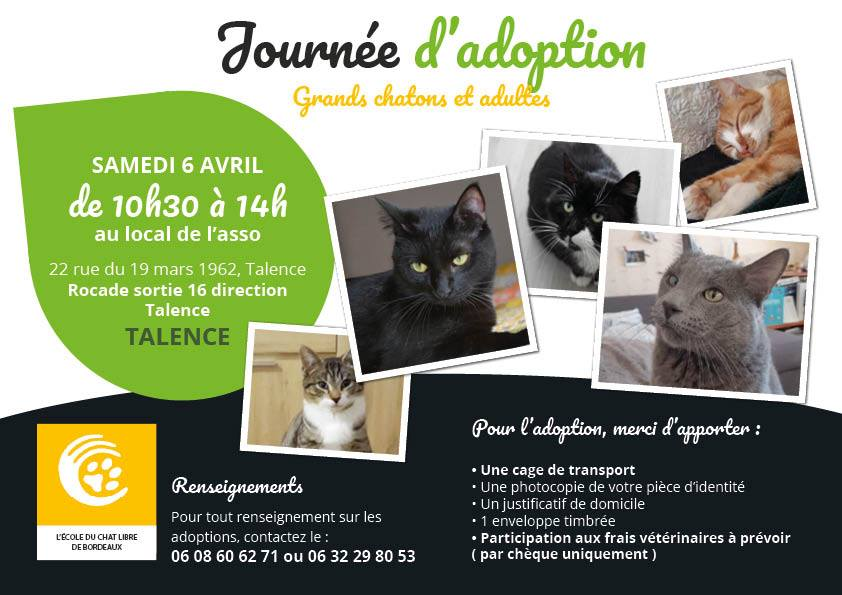 chat gay ariege