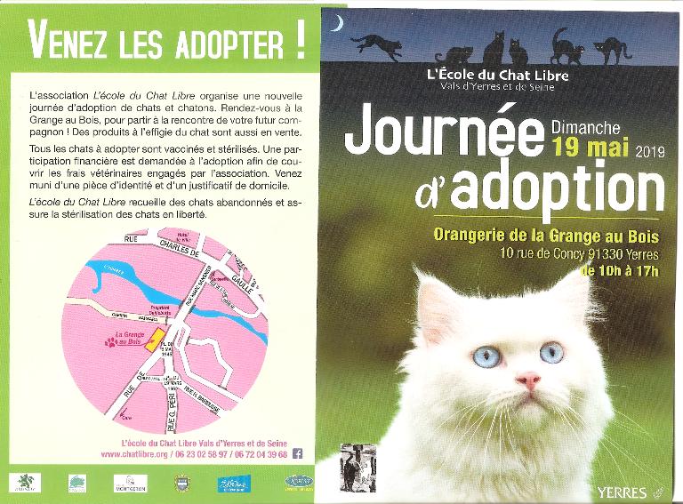 Journée d'adoptions de chats et chatons le 19 mai 2019 à YERRES (91)