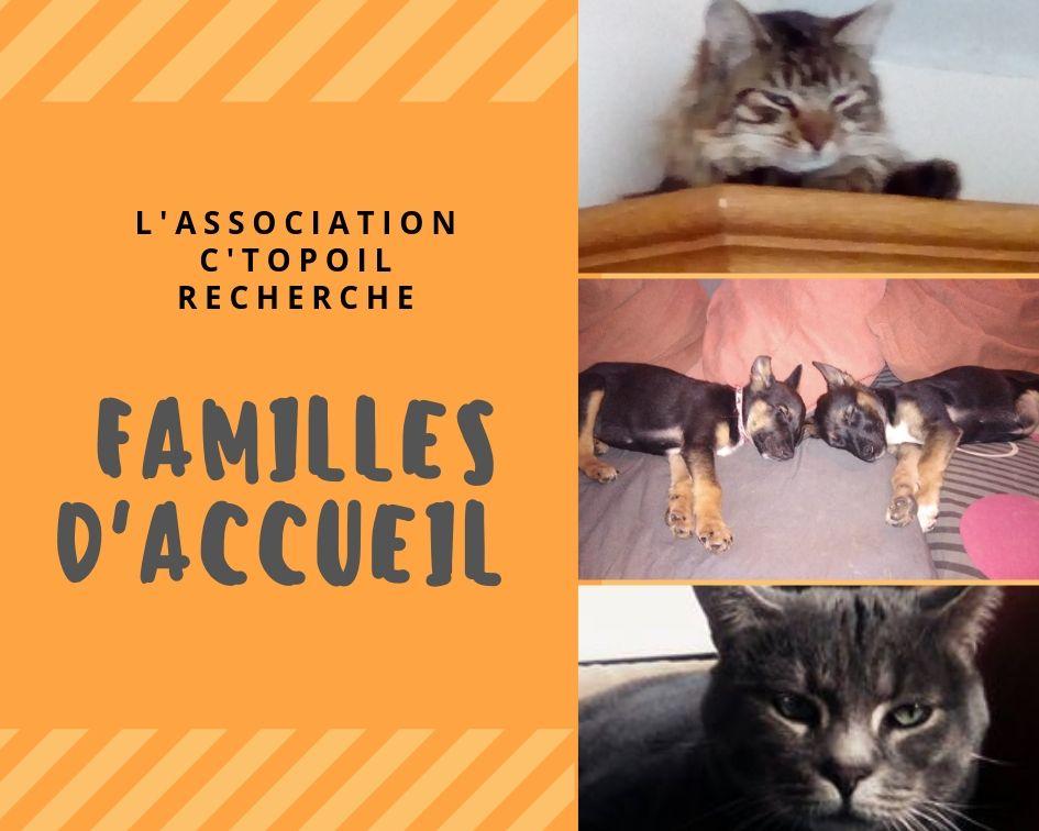 RECHERCHE FAMILLES D'ACCUEIL
