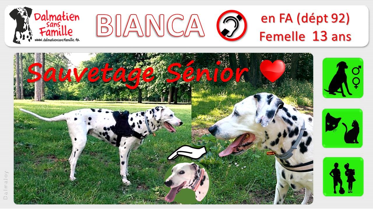SAUVETAGE SENIOR pour BIANCA
