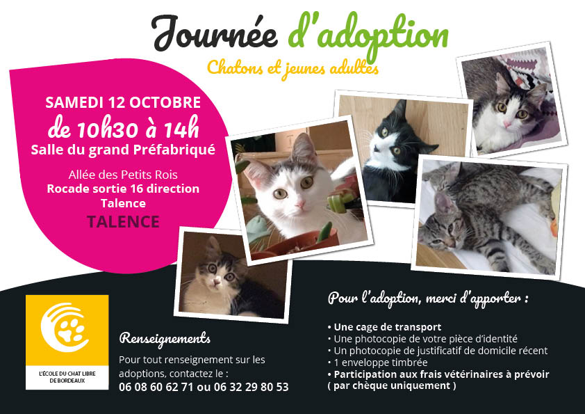 JOURNEE D ADOPTION CHATON 12/10