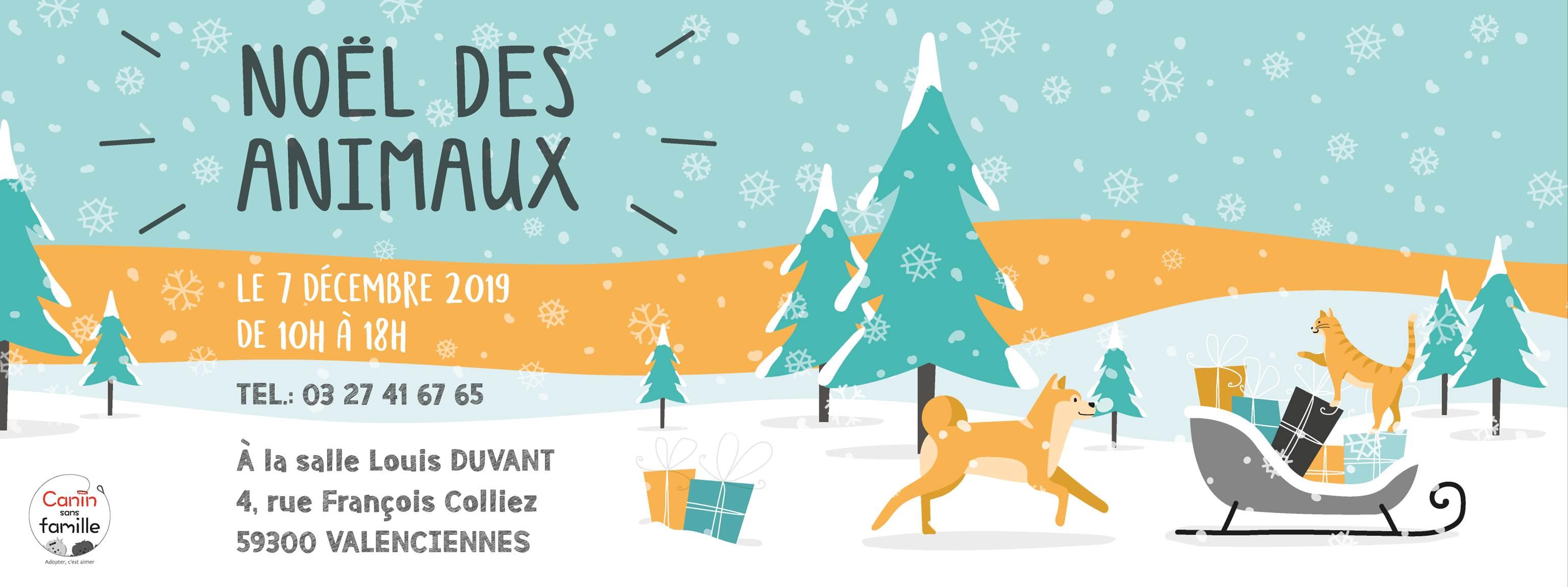 Noël des animaux de Canin Sans Famille (Valenciennes)