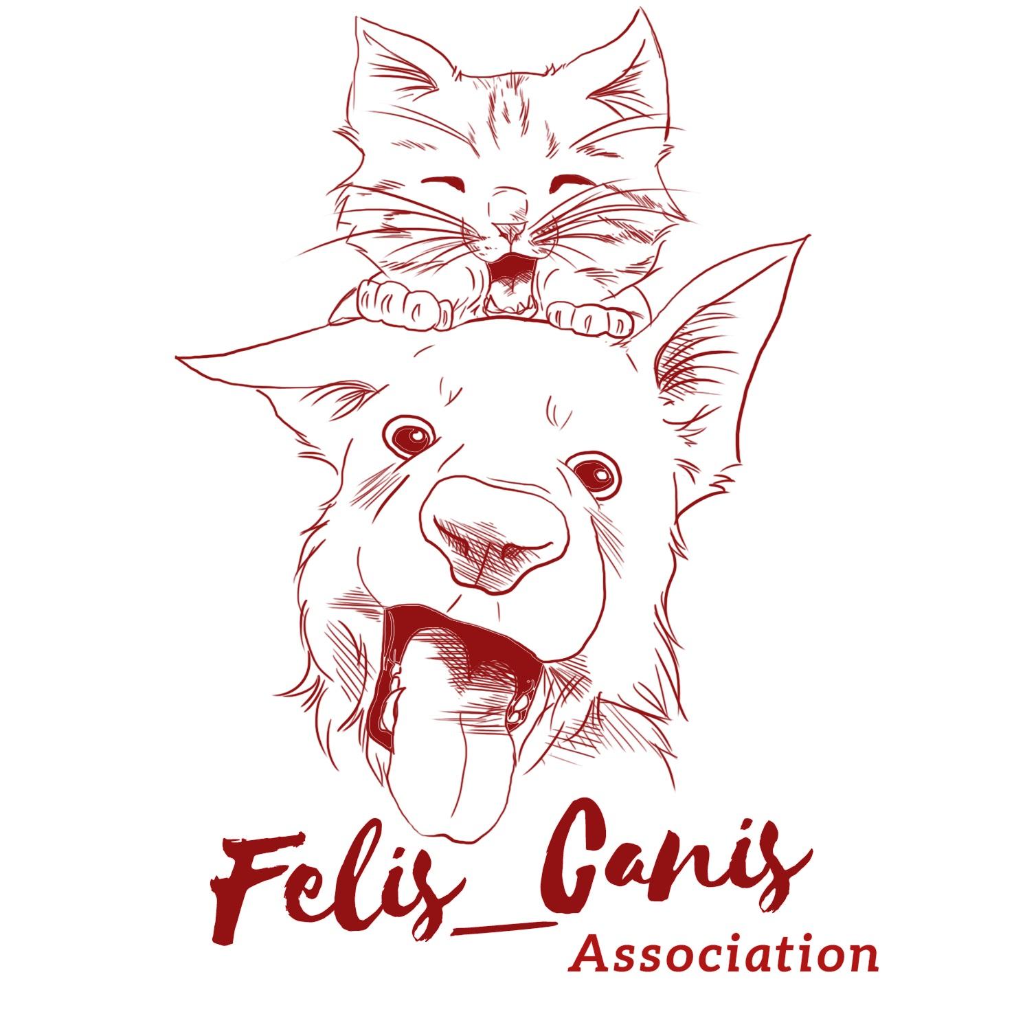 FELIS_CANIS ASSOCIATION, URGENT RECHERCHE FAMILLE D'ACCUEIL POUR CHIENS / CHATS