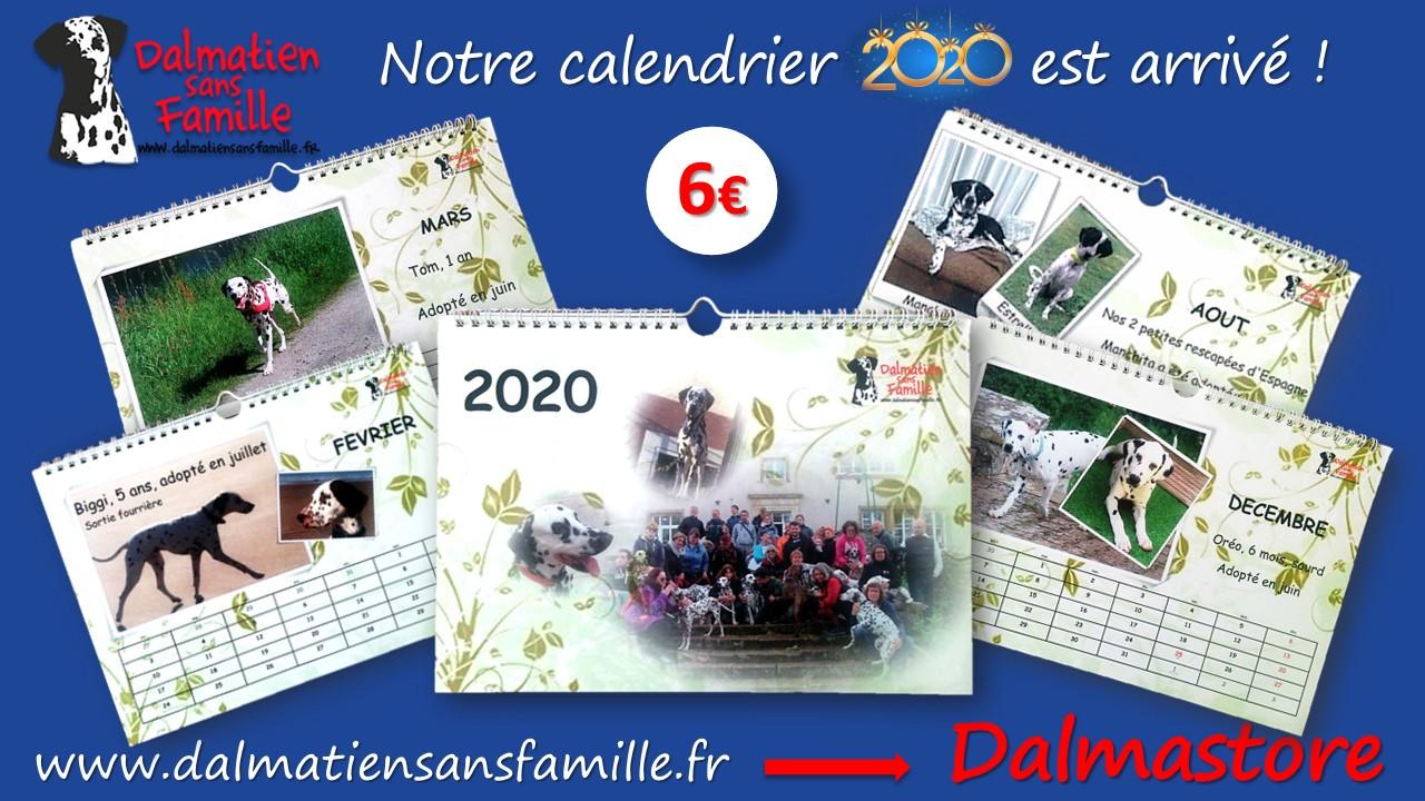 Le calendrier 2020 de DALMATIEN sans FAMILLE est en vente sur le DALMASTORE !