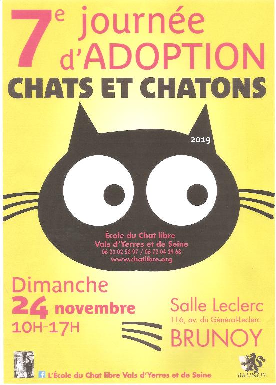 Journée d'adoptions de chats et chatons le 24 novembre 2019 à BRUNOY (91)