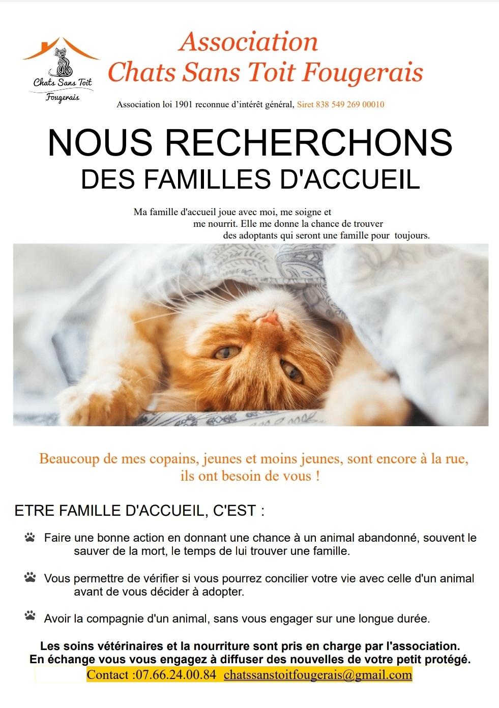 RECHERCHE FAMILLE D'ACCEUIL - SECTEUR FOUGERES (35)