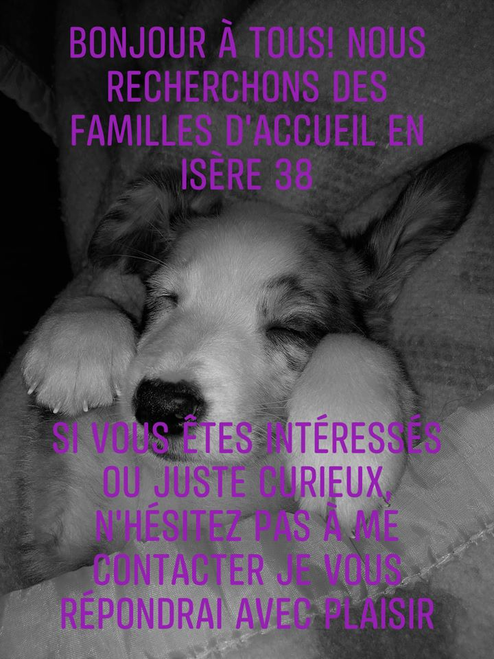 Nous recherchons des familles d'accueil en Isère 38