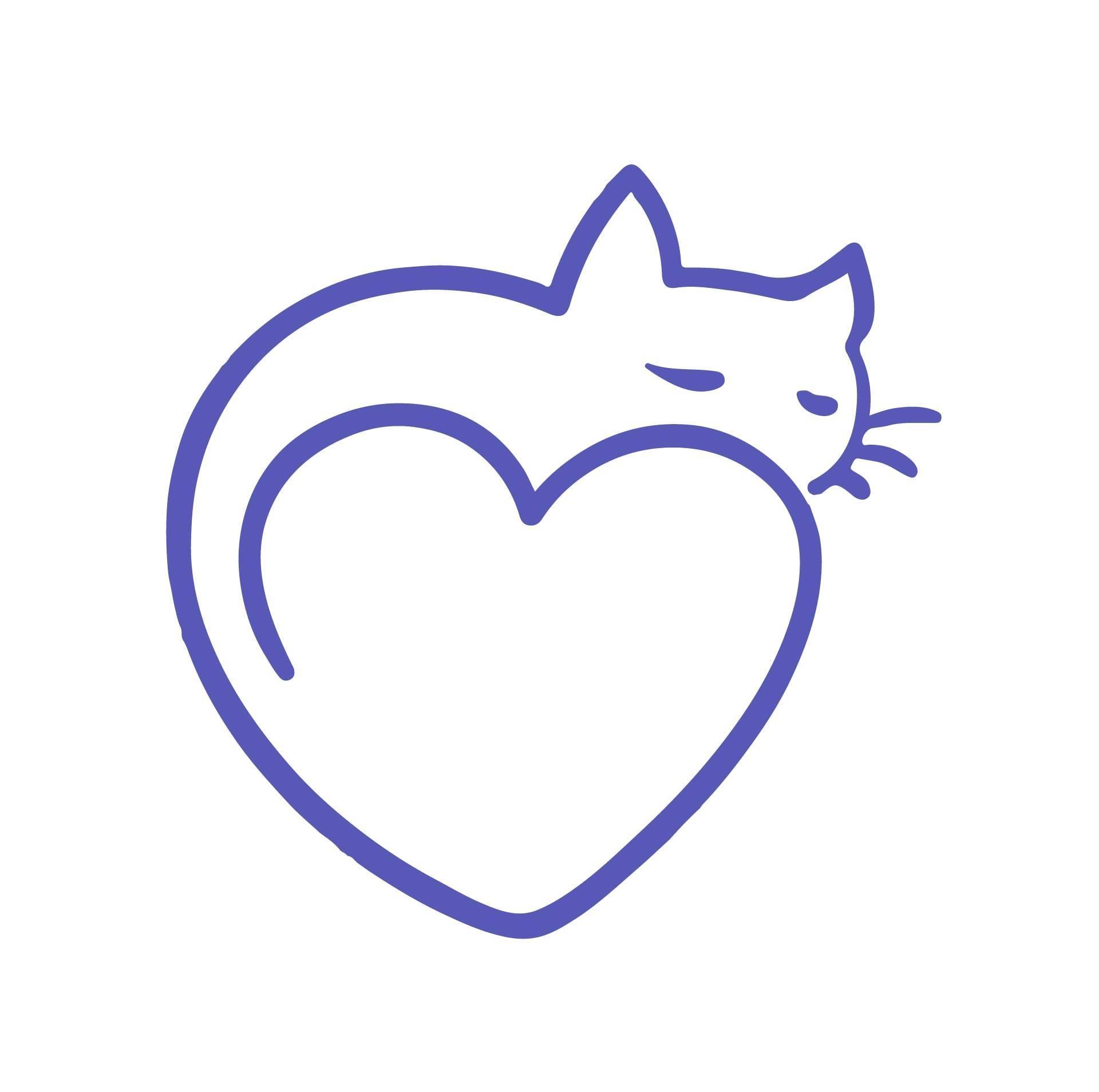 Recherche famille d'accueil pour  chat mais ADULTES