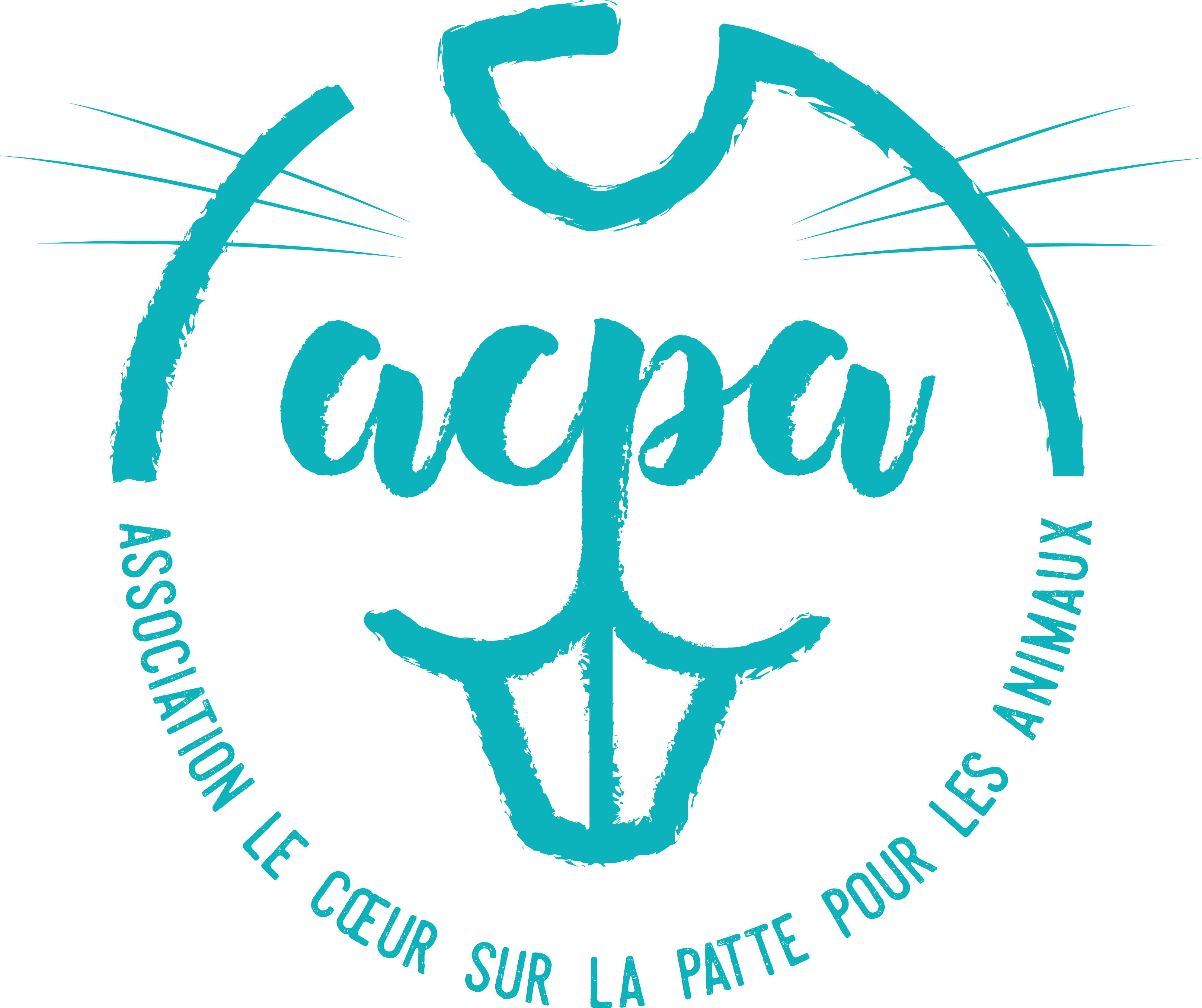 Recherche de Familles d'Accueil Lapins & Rongeurs