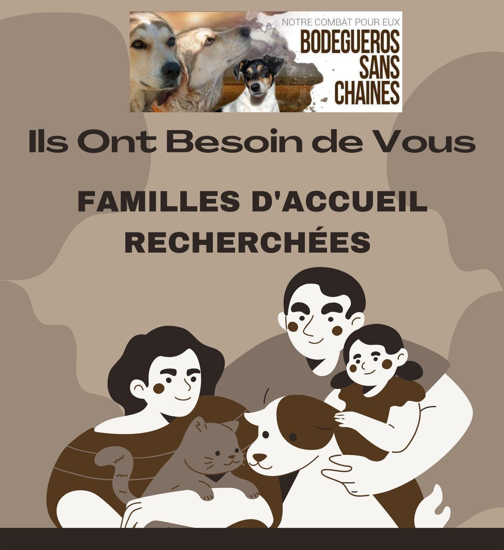Recherche familles d'accueil sur toute la France