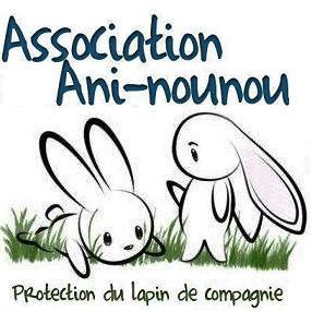 Recherche familles d'accueil pour lapins
