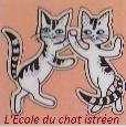 Recherche à Istres pour des chatons