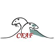 Club Français des Amateurs du Furet