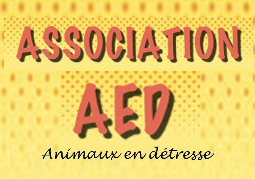 AED (AAED)