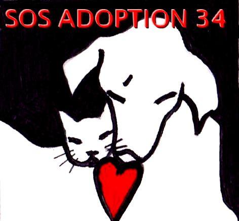 SOS Adoption 34