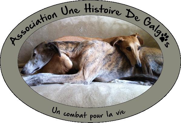 ASSOCIATION UNE HISTOIRE DE GALGOS