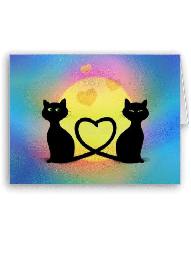 Au bonheur des chats