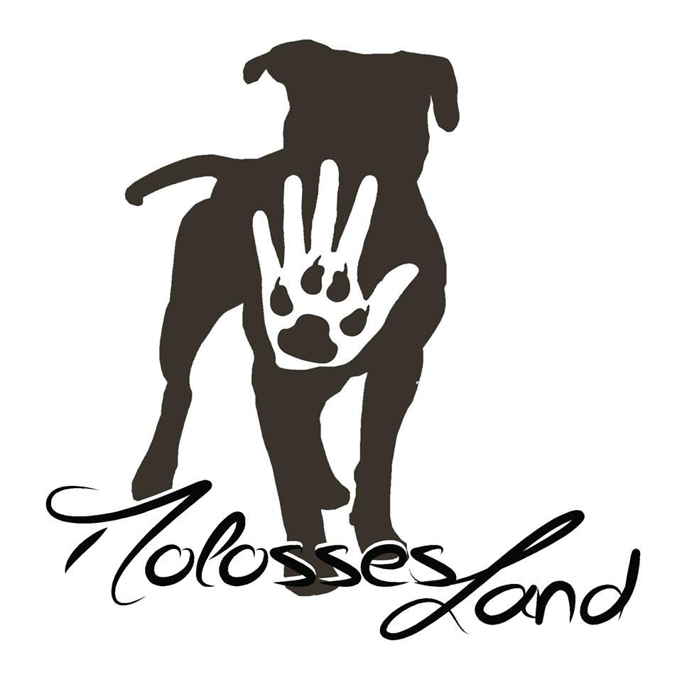 MOLOSSES LAND