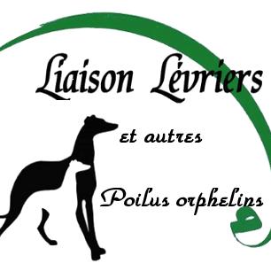Liaison Lévriers et Autres Poilus Orphelins