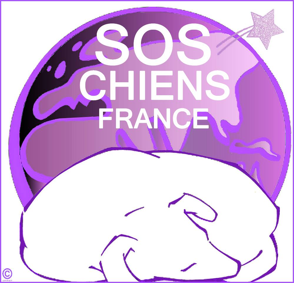 S.O.S Chiens France