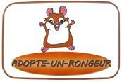 Adopte-un-Rongeur