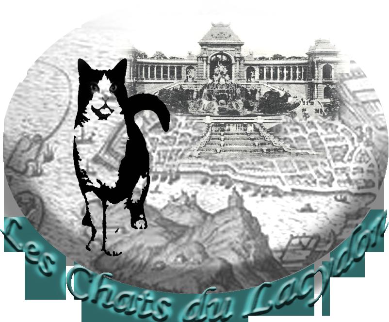 Les Chats du Lacydon