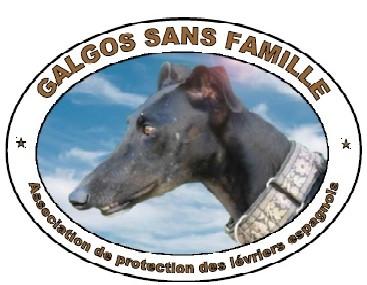 Galgos sans famille
