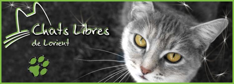 Les Chats Libres de Lorient