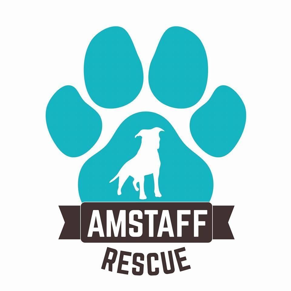 Amstaff Rescue