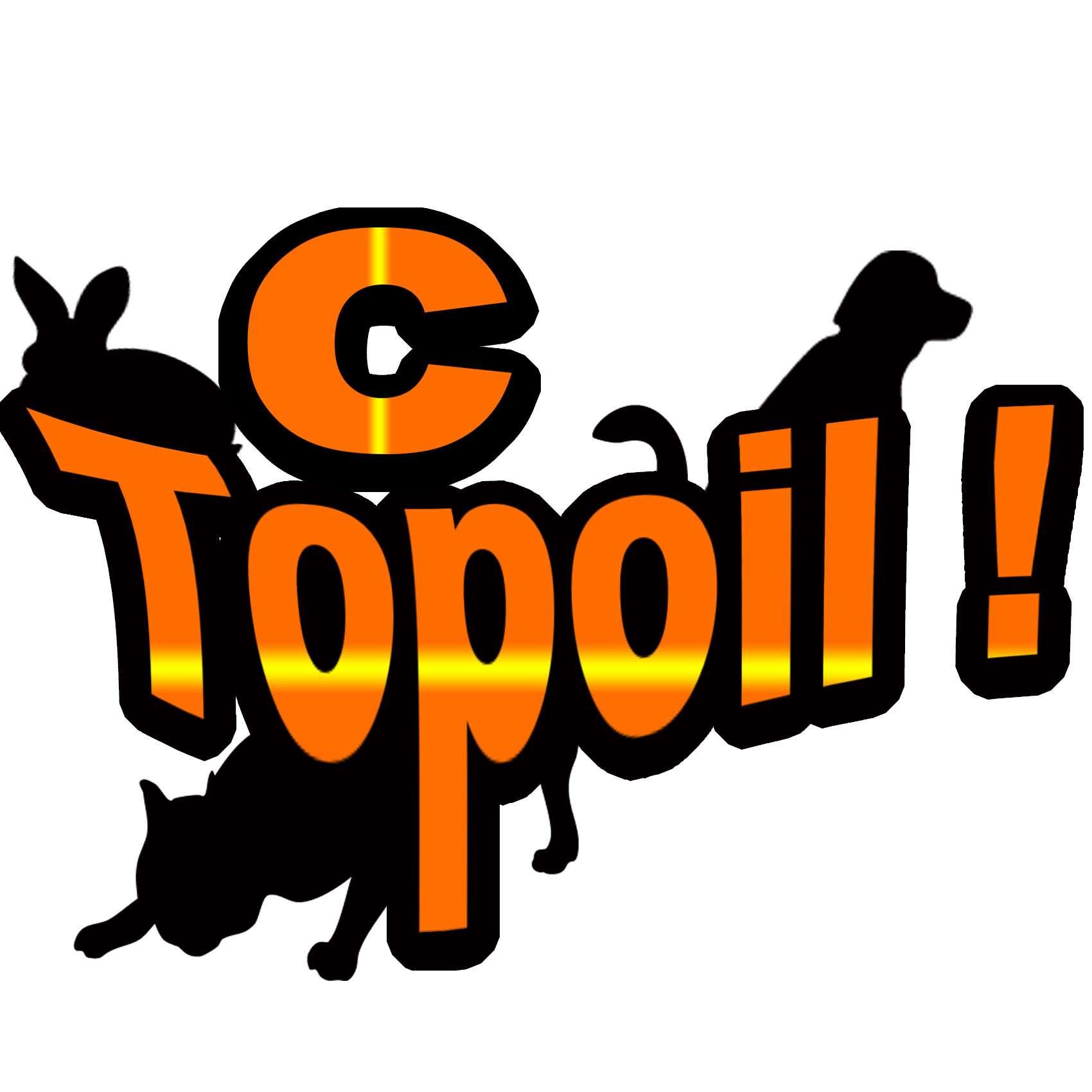 C'Topoil