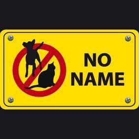 AA NO NAME