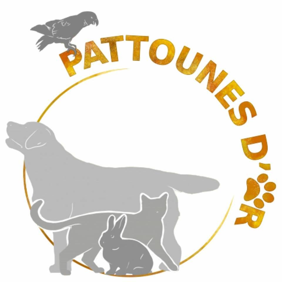 Pattounes d'or