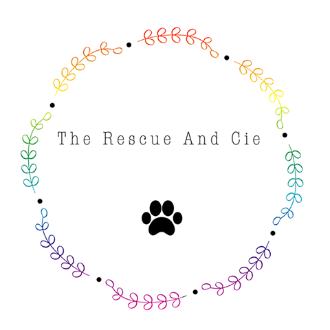 The Rescue And Cie